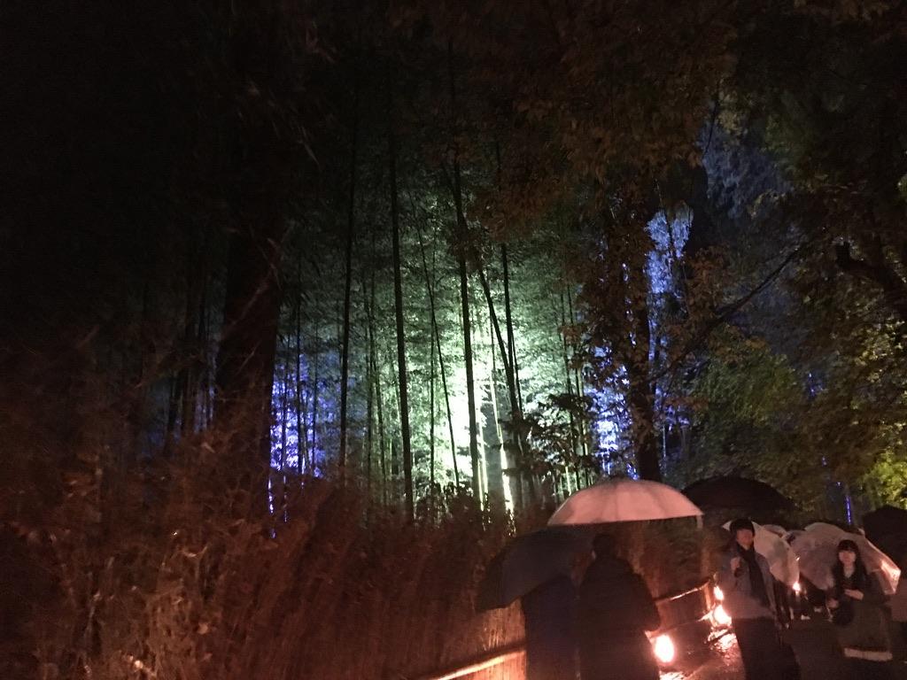 嵐山花小路 竹林の小径