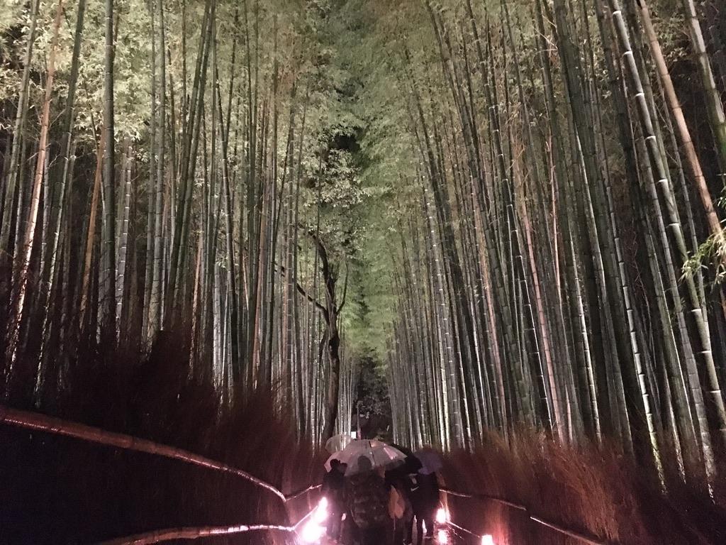 嵐山花灯路 竹林の小径