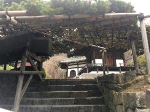 善峯寺 遊龍松への階段