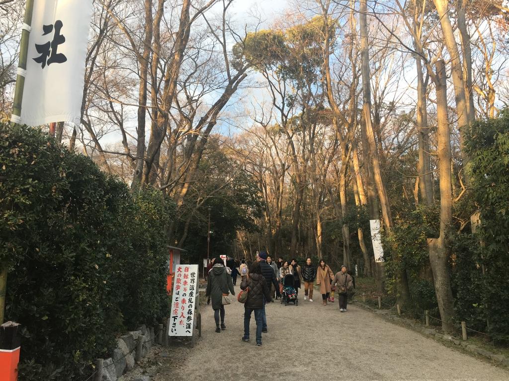 下鴨神社 初詣 糺の森
