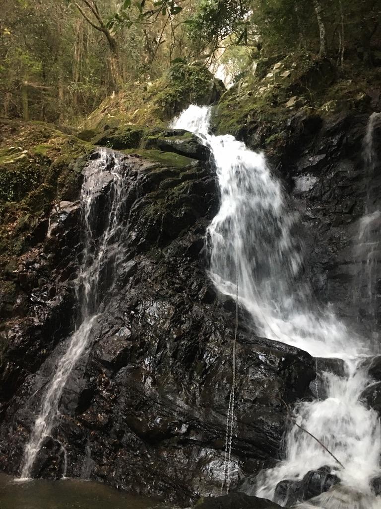犬鳴山七宝龍寺 行者の滝