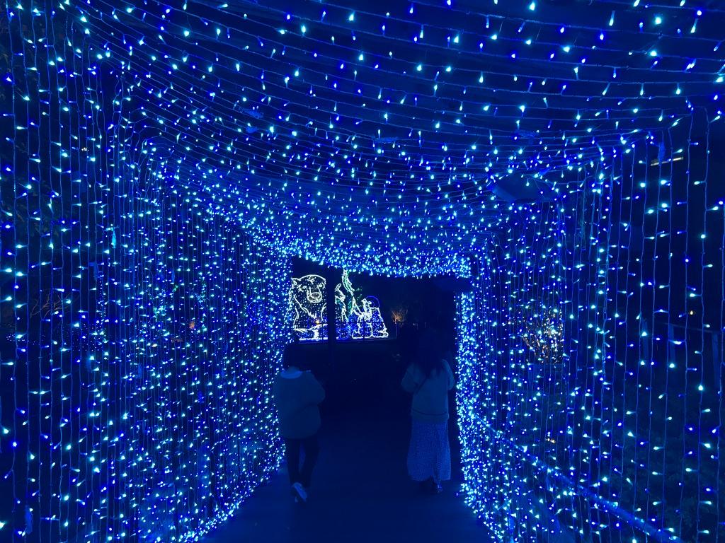 なんば光旅 なんばパークス 光のトンネル