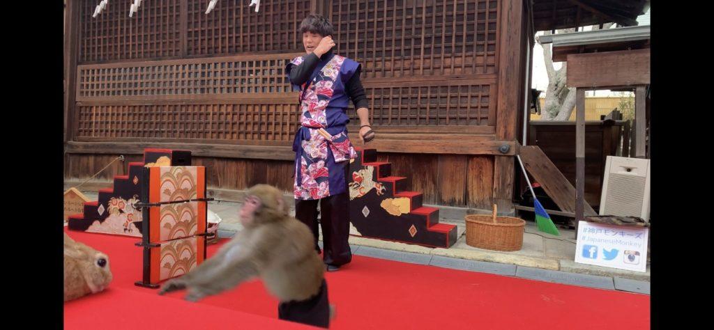なにわ七幸めぐり 大阪天満宮 猿まわし ウサギ