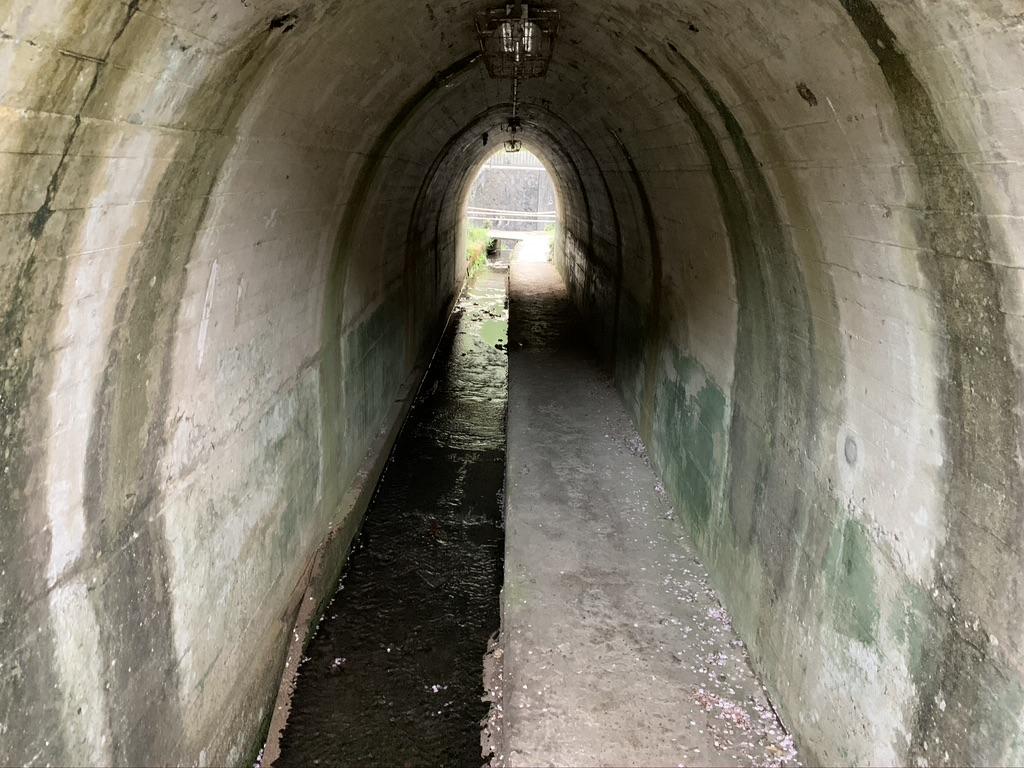 山中渓 山中渓駅 トンネル