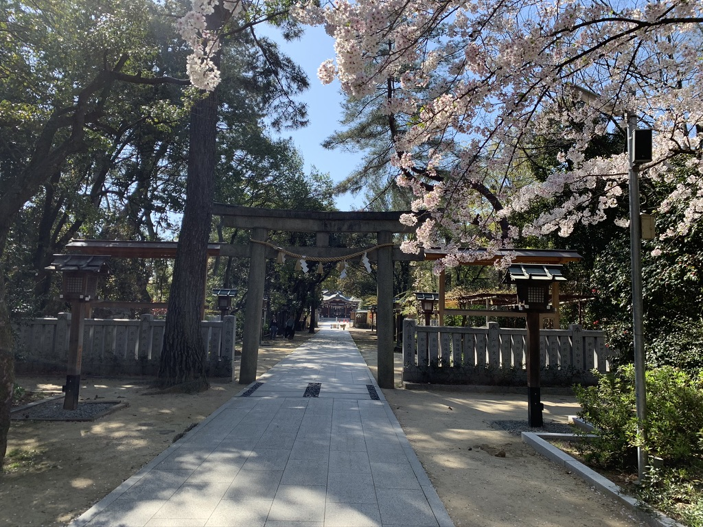 辛国神社 二の鳥居 桜