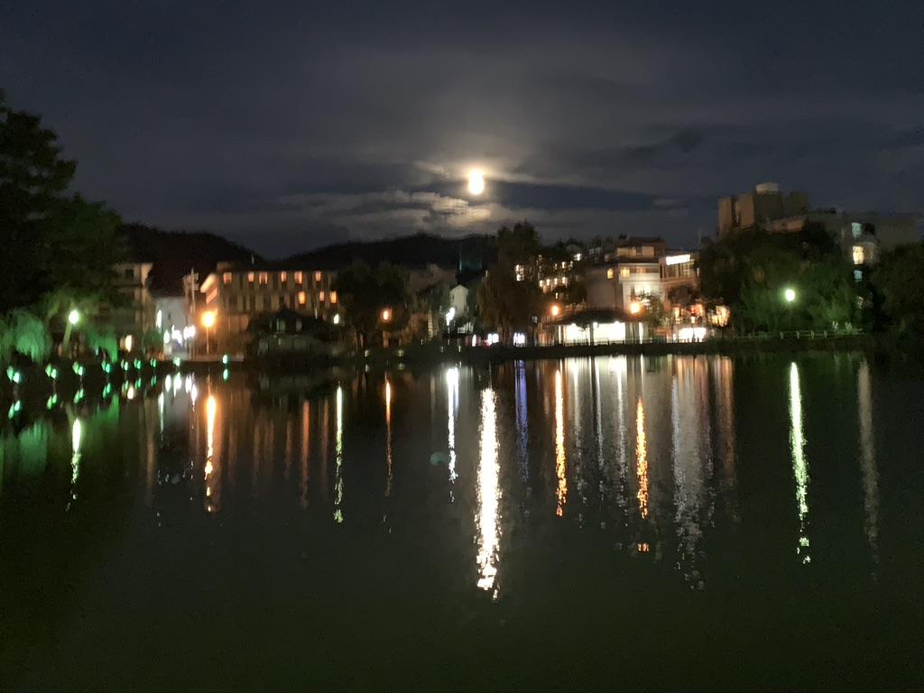 奈良 猿渡池 月