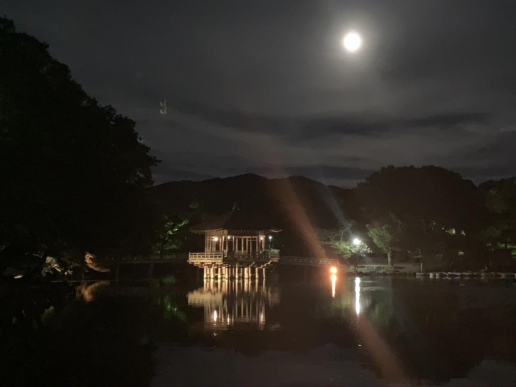 浮見堂 奈良 夜間 ライトアップ