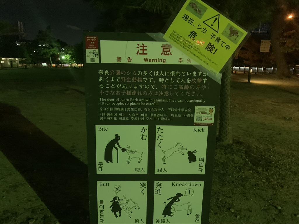 奈良公園 鹿 子育て中 注意