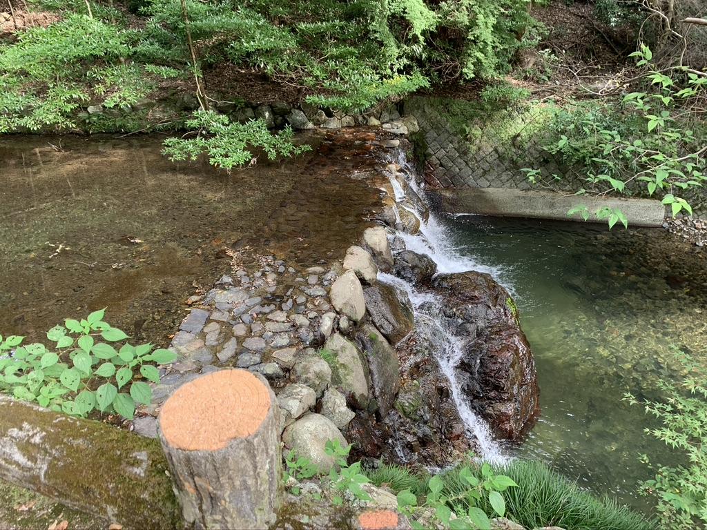 箕面の滝 滝道