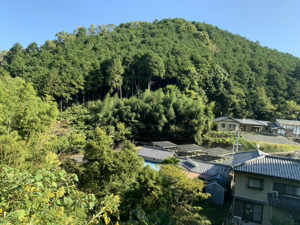 壺阪寺 参拝道