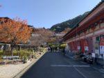 壺阪寺 参道