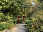 岡寺 奥の院 参拝道