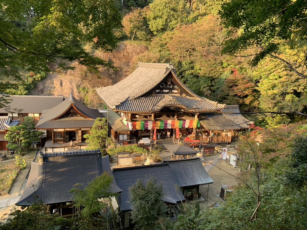 岡寺 境内 本堂