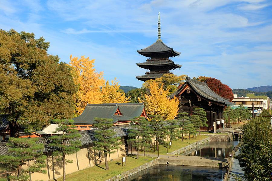 東寺 そうだ 京都、行こう。公式ホームページ