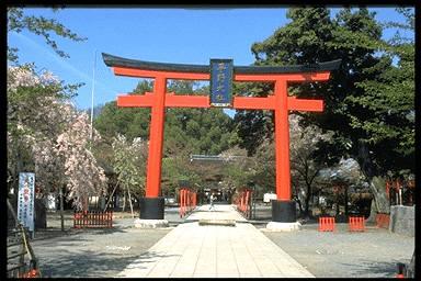 平野神社 京都観光オフィシャルサイト